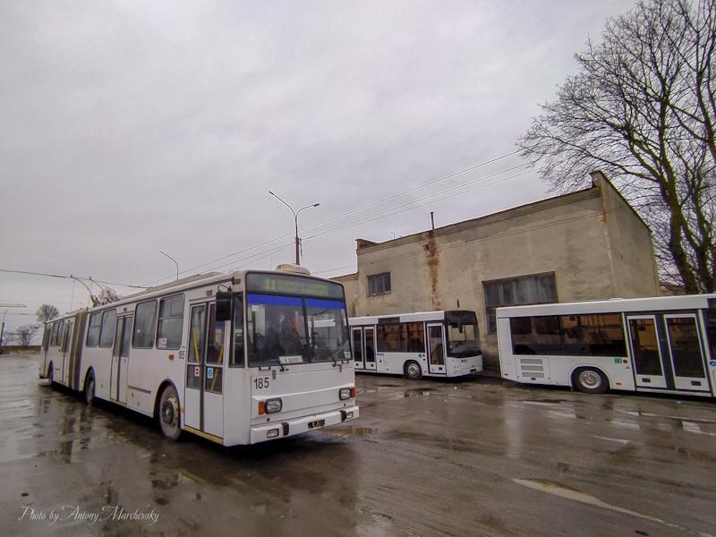 Громадський транспорт Тернополя з 23 березня призупиняє перевезення пасажирів